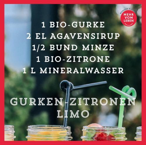 Gurke-Zitronen Limo